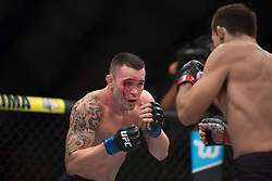 October 29, 2017 - Sao Paulo, Brazil - DEMIAN MAIA (in black) and COLBY COVINGTON fight in the octagon, during UFC Fight Night Sao Paulo at Ibirapuera Gymnasium in Sao Paulo, Brazil. (Credit Image: © Paulo Lopes via ZUMA Wire)