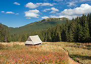 Dolina Olczyska, Tatry Zachodnie, Polska <br /> Olczyska Valley, West Tatra Mountains, Poland