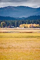 Headquarters buliding in the autumn across the lake at Conboy Lake National Wildlife Refuge, Klickitat County, WA, USA