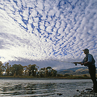 Paradise Valley, Park County, Montana. A fly fisherman casts for trout in the Yellowstone River.