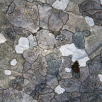 Europe, Great Britain, Wales. Dyffryn Ardudwy stone.