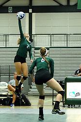 22 September 2015:  Kyleigh Block(2) during an NCAA womens division 3 Volleyball match between the Augustana Vikings and the Illinois Wesleyan Titans in Shirk Center, Bloomington IL