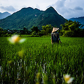 This Country Life: Vietnam