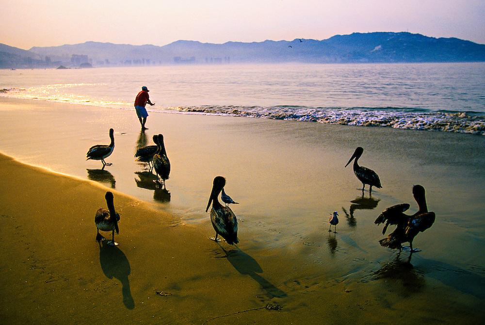 Hornitos Beach, Acapulco, Mexico