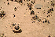An unexploded landmine in the Manageesh Oil Fields in Kuwait near the Saudi border. Huge amounts of munitions were abandoned in Kuwait by retreating Iraqi troops in February 1991. Also, nearly a million land mines were deployed on the beaches and along the Saudi and Iraqi border. In addition, tens of thousands of unexploded bomblets (from cluster bombs dropped by Allied aircraft) littered the desert.