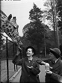 1960-09/05 Schoolgirls Visit Dublin Zoo