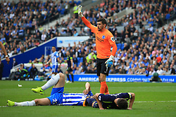 15 October 2017 -  Premier League - Brighton and Hove Albion v Everton - Matthew Ryan of Brighton and Hove Albion reacts after a clash of lads between Shane Duffy of Brighton and Phil Jagielka of Everton - Photo: Marc Atkins/Offside