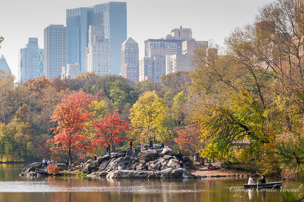 Autumn glory at The Hernshead  in Central Park with the hazy towers of mid-Manhattan looming in back.
