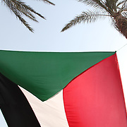 A giant Palestinian flag flies in Cairo's Tahrir Square.