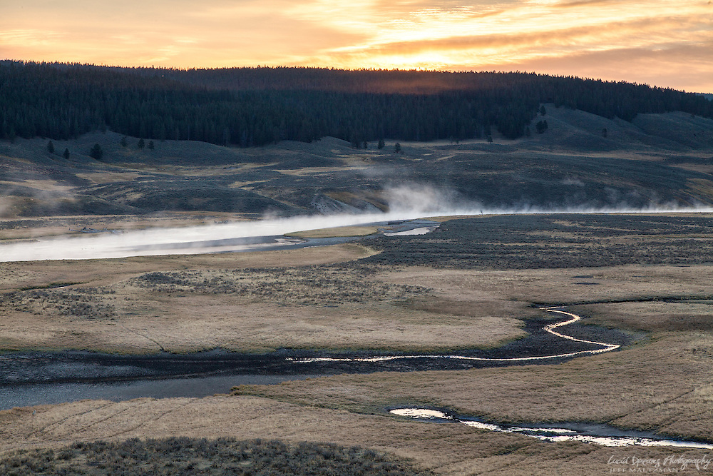 Lit sky as the sun rises over a meadow near Hayden Valley, Yellowstone National Park