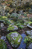 Chikarin-in garden is composed of a stream, stones, trees, and moss.  Collectively it is meant to portray Mother Nature.  Chikarin-in was once a temple but became a venue for tea ceremony, and even today has two rare teahouses that have been the venue for famous tea ceremony events in history.  The teahouses can be seen in the strolling garden.