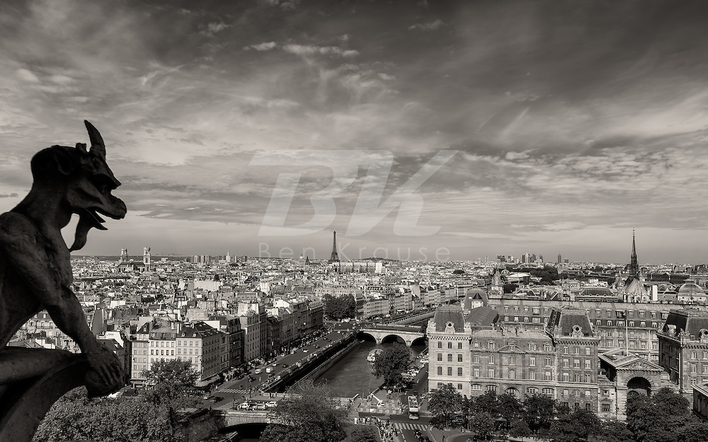 After walking up approximately 400 steps of narrow spiraling stair cases this is the view from the top of Notre Dame.  It offers one of the best views of the Paris skyline.