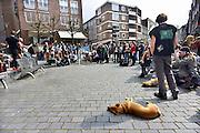 Nederland, Nijmegen, 5-4-2014Manifestatie van de AFA, anti facistische actie, tegen de demonstratie van pro-Wilders aanhangers die elders in de stad gehouden wordt. De twee groepen zijn de de politie van elkaar gescheiden en er deden zich geen confrontaties voor. Wel kreeg een verslaggever van POWnieus ruzie met woordvoerders van beide partijen.Foto: Flip Franssen