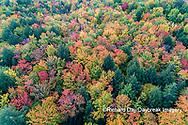 64776-02118 Aerial view of Hugoboom Lake in fall color Alger Co. MI