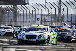 March 11, 2017 - St Petersburg, FLORIDE, UNITED STATES OF AMERICA - 78 YUFENG LUO (USA) ABSOLUTE RACING BENTLEY CONTINENTAL GT3 GT (Credit Image: © Panoramic via ZUMA Press)