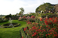 red roses and a fountain in a country garden