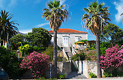 A beautiful beach house with flowers in the garden framed by two big palm trees. Orebic town, holiday resort on the south coast of the Peljesac peninsula. Orebic town. Peljesac peninsula. Dalmatian Coast, Croatia, Europe.