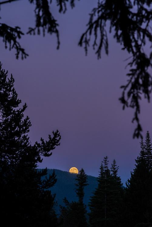 Moon rising over a ridge in Oregon's Wallowa Mountains.