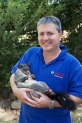 Kevin Schroder Holding Mountain Brushtail Possum