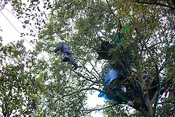 Aylesbury Vale, UK. 6th October, 2020. An anti-HS2 activist crosses between trees about sixty feet above ground at a wildlife protection camp in ancient woodland at Jones' Hill Wood. The Jones' Hill Wood camp, one of several protest camps set up by anti-HS2 activists along the route of the £106bn HS2 high-speed rail link in order to resist the controversial infrastructure project, is currently being evicted by National Eviction Team bailiffs working on behalf of HS2 Ltd.