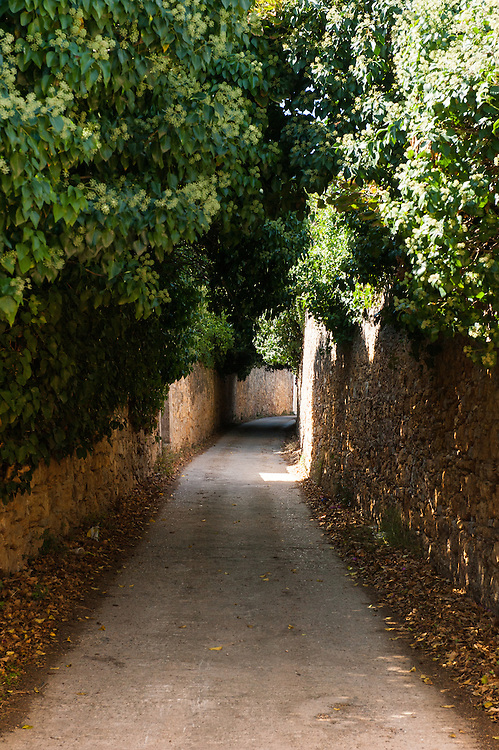 """A narrow street in Kampos, Chios. The high walls are build to protect the citrus trees from extreme weather. <br /> Kampos of Chios  is one of the most distinctive areas of the island. It is 6 Km south of Chios Town and is widely known for the impressive mansions with their citrus fruits gardens. The area is protected by the Greek Ministry for Culture, as a historic site and traditional settlement. The high walls made of the local reddish stone protect the gardens of citrus fruits from extreme weather conditions.  The Genoese and local aristocracy of Chios started building their mansions in the area in the 14th century. The name """"Kampos"""" (""""Campus"""" in Latin) is found in travellers' accounts since 1673.  The Genoese created the extensive citrus gardens in Kampos in the 13th century."""