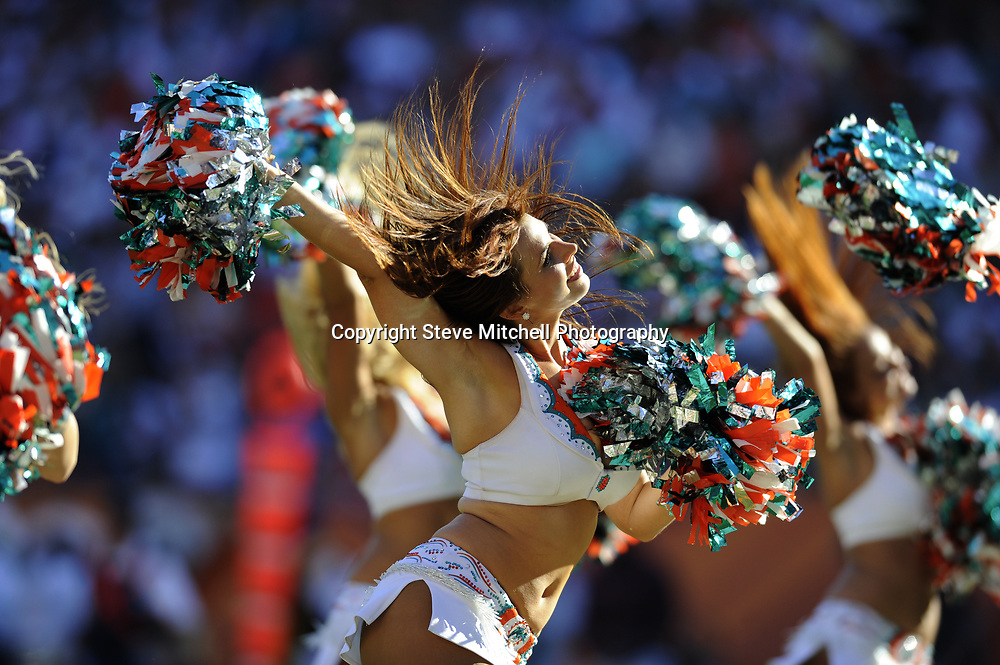 Nov 15, 2009;  Miami, FL, USA;  Miami Dolphins cheerleaders perform during the second half against the Tampa Bay Buccaneers at Land Shark Stadium. The Dolphins won 25-23. Mandatory Credit: Steve Mitchell