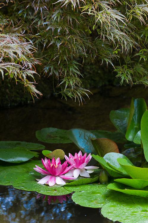 The Butchart Gardens, National Historic Site, near Victoria, British Columbia, Canada