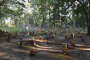 Coon Dog Cemetery July 2013.© Suzi Altman/TheOneMediaGroup