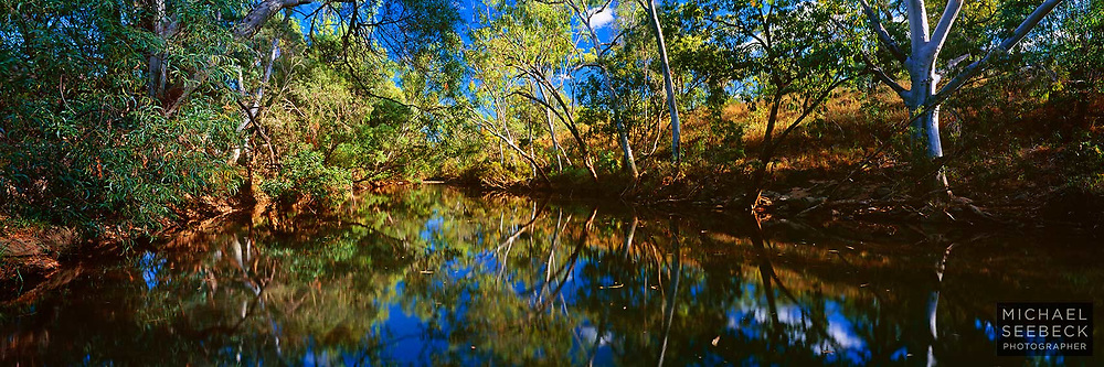 A panoramic photograph of a freshwater billabong bathed in late afternoon sunlight.<br /> <br /> Code: HAQT0038<br /> <br /> Limited Edition Print