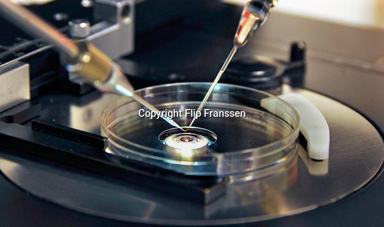 Nederland, Nijmegen, 6-1-2010Schaaltje onder een microscoop waar een eicel gefixeerd wordt om daarna door de laborant kunstmatig bevrucht te worden, de icsi methode. Bij IVF worden veel zaadcellen in een schaaltje met daarin een eicel gebracht, zodat een zaadcel op eigen kracht de eicel kan bevruchten. Bij ICSI wordt een geselecteerde zaadcel direct met een naald in de eicel gezet. Op de foto wordt de eicel door het pipetje links in positie gehouden, terwijl de zaadcel met een dunnen naald wordt geinjecteerd .  In vitro fertilisatie . Foto: Flip Franssen