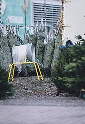 THEMENBILD - Christ- und Weihnachtsbäume werden an einem Stand verkauft, aufgenommen am 07. Dezember 2020, Zell am See, Österreich // Christmas and Christmas trees are sold at one stand on 2020/12/07, Zell am See, Austria. EXPA Pictures © 2020, PhotoCredit: EXPA/ Stefanie Oberhauser