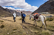 Hiking with horse backup below Laguna Viconga on Day 4 of 9 days trekking around the Cordillera Huayhuash in the Andes Mountains, Peru, South America.