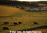 York Co., PA Countryside, <br />