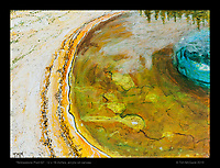"""""""Yellowstone Pool 02"""", 12 x 16 inches, acrylic on canvas.  © Tim McGuire 2015"""
