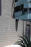 architect: David C Martin