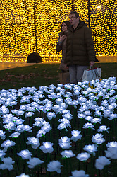 """IMAGES CORRECTLY SIZED © Licensed to London News Pictures. 30/11/2019. LONDON, UK. Visitors plant a rose in the """"Ever After Garden"""" which has opened to the public in Grosvenor Square. Designed by Anya Hindmarch and Camilla Morton in memory of their friend and top Production Designer Michael Howells, the Ever After Garden comprises a space filled with over 27,000 illuminated white roses. Visitors can plant a rose in memory of loved ones they have lost, the cost of each rose helping to raise funds for The Royal Marsden Cancer Charity. The garden is open until 22 December. Photo credit: Stephen Chung/LNP"""