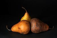 Still life of Bosc pears.