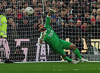 Football - 2018 / 2019 Emirates FA Cup - Fourth Round: Crystal Palace vs. Tottenham Hotspur<br /> <br /> Julian Speroni of Palace watches Tottenham's Trippier miss his Penalty kick, at Selhurst Park.<br /> <br /> COLORSPORT/ANDREW COWIE
