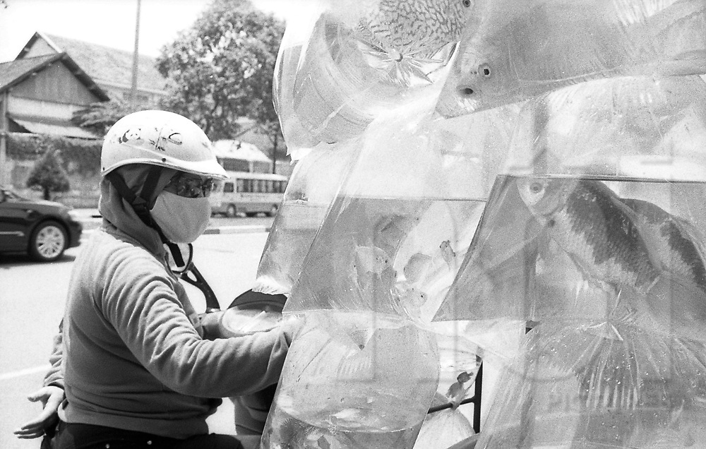 A vietnamese woman purchases tropical fish from a road side vendor, Ho Chi Minh City, Vietnam, Asia