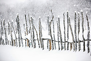 A wooden fence built at a reindeer enclosure in Kirkeness, Finnmark region, northern Norway