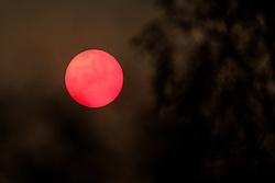 Hazy cloud around a very watery sun in South Lanarkshire.<br /> <br /> (c) Andrew Wilson   Edinburgh Elite media