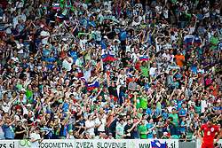 Supporters of Slovenia during the EURO 2016 Qualifier Group E match between Slovenia and England at SRC Stozice on June 14, 2015 in Ljubljana, Slovenia. Photo by Vid Ponikvar / Sportida