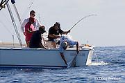 recreational fishermen bring in a striped marlin, Kajikia audax (formerly Tetrapturus audax ), off Cabo San Lucas, Baja California, Mexico ( Eastern Pacific Ocean )