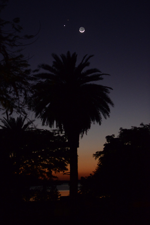 The sliver of a waxing moon, Venus, and Jupiter adorn the night sky over Royal Palms in the Florida Everglades