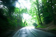 The view through Richard and Fenella Hodson's car as they are driving down the road to their village, Godalming, UK. (Material World Family from Great Britain UK).