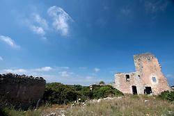 """Masseria abbandonata in zona Itri, Gallipoli (LE), non lontanto dalla famosa masserie """"Li Sauli"""". La struttura, dopo decenni di abbandono e incuria, sta lentamente crollando mentre la natura si riappropria piano piano dello spazio."""