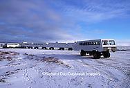 01874-092.07 Tundra Buggies near Tundra Buggy Lodge  Churchill  MB