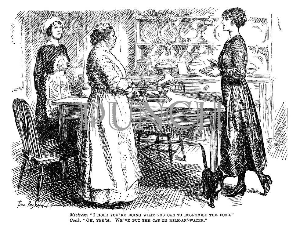 """Mistress. """"I hope you're doing what you can to economise the food."""" Cook. """"Oh, yes'm. We've put the cat on milk-an'-water."""""""