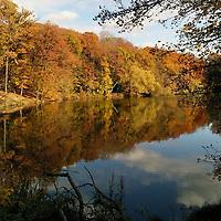Il y a si longtemps déjà, en novembre, les arbres de la forêt de Meudon faisaient la fête. Et j'entendais leur appel depuis mon bureau.<br /> Du coup, je n'avais pas d'autre choix que de sortir faire une marche rapide pendant ma pause déjeuner et je suis ravi d'avoir fait ce choix.<br /> J'ai découvert mon amour pour la photo quand j'habitais en Finlande et ils ont un mot pour ce que j'admirais ce jour-là : ruska. Les couleurs de l'automne. On a eu la chance d'avoir un ruska magnifique à Paris cette année. Et je suis ravi d'avoir pris le temps d'en profiter.<br /> <br /> Way back in November the trees in Forêt de Meudon were having a party. And from the office, I could hear their call. So, I just had to go for a fast walk on my lunch break and boy am I glad I did.<br /> I discovered my love for photography when I was living in Finland and they have a word for what I was witnessing on that day: ruska. The colours of Autumn. We were lucky to have a gorgeous ruska in Paris this year. Glad I could make some to enjoy it.