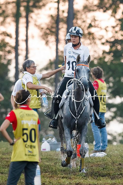 Schuiten Louna, BEL, Sabah Du Courtisot<br /> World Equestrian Games - Tryon 2018<br /> © Hippo Foto - Dirk Caremans